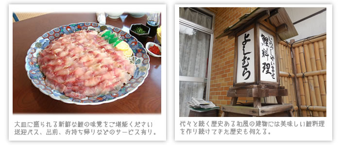 yosimura_2