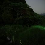 2014_06_02②