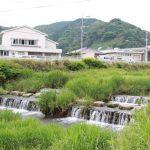 【祇園川】佐賀県小城市ホタル観賞情報
