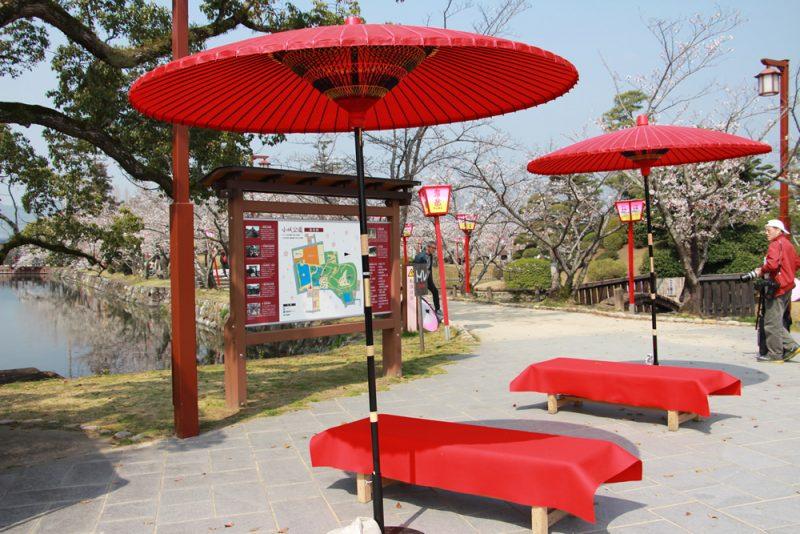 小城公園(桜開花情報)