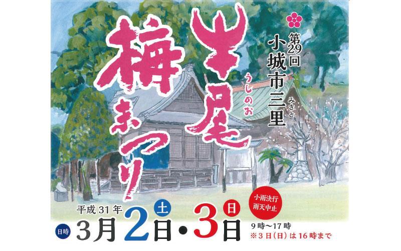 第29回『牛尾梅まつり』2019 (小城市三里) plum festival