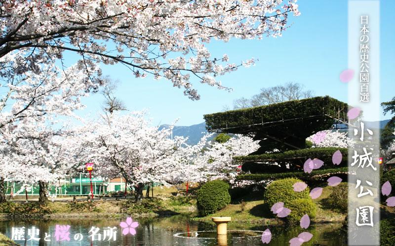 小城公園(Ogi Park)